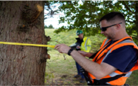 Ultimate Tree Protection Tools
